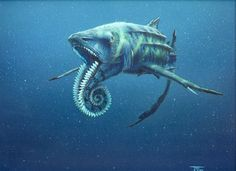Known as the Spiral Saw, the Helicoprion is said to have lived during the Carboniferous period and was one of the few creatures able to live through the Permian-Triassic extinction event ('The Great Dying'). Eventually the Helicoprion went extinct during the Triassic period. It had teeth like a circular saw, connected on the lower jaw. As new teeth grew, the older teeth were pushed out and into the middle to create the spiral. Length-wise the creature was said to be 10-15 feet.