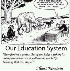 For a Fair Selection Everybody Has to Take the Same Exam Please Climb That Tree Our Education System Everybody Is a Genius but if You Judge a Fish by Its Ability to Climb a Tree It Will Live Its Whole Life Believing That It Is Stupid Albert Einstein Wisdom Quotes, True Quotes, Great Quotes, Funny Quotes, Funny Memes, Inspirational Quotes, Quotes Pics, Motivational Pictures, Real Life Quotes