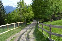 path Paths, Sidewalk, Country Roads, Nature, Pathways, Nature Illustration, Off Grid, Pavement, Mother Nature