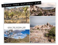 Joshua Tree National Park - photo collage