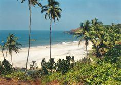 35 beaches in Goa. Pictured: cavelossem beach