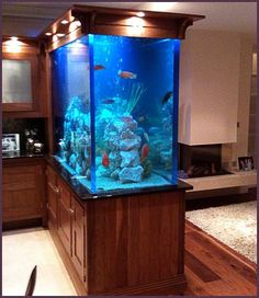 Custom Homes And Fishtanks Built Aquariums Bespoke Kitchen Aquarium