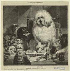 """19th anthropomorphized animals, from the NYPL's archives. Love this one, called """"Le procès des chiens."""""""