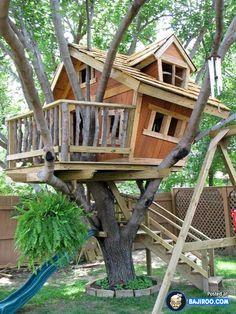 Creative treehouse ideas.