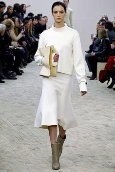 Céline Fall 2013 Ready-to-Wear Fashion Show - Christina Herrmann (NEXT)