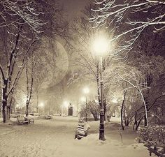 I love winter! Winter Szenen, I Love Winter, Winter Walk, Winter Trees, Winter Night, Winter Photos, Fall Pictures, Pretty Pictures, I Love Snow