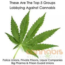 Top 5 Groups Lobbying Against Cannabis - Police Unions, Private Prisons, Liquor Companies, Big Pharma and Prison Guard Unions
