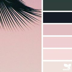 today's inspiration image for { summer hues } is by @thebungalow22 ... thank you, Steph, for another incredible #SeedsColor image share!