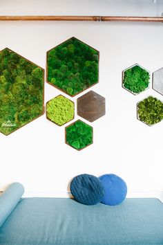 Adorable Honeycomb/Hexagon Wall Shelf Ideas - Unique Balcony & Garden Decoration and Easy DIY Ideas Moss Wall Art, Moss Art, Hexagon Wall Shelf, Diy Wall, Wall Decor, Moss Decor, Green Office, Clinic Design, Plant Wall