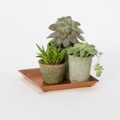 'Polished Copper Tray Square' from terrain ... lovely way to gather house plants or outdoors $18