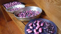 How to Dry and Store Scarlett Runner Beans
