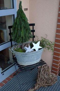Ich bin in diesem Jahr ganz verliebt in kleine gebundene Minitannen. Aus einem 80 cm langen Haselnussstock undTannenzweigabschnitten band ich mit Blumendraht solch einen kleinen Baum, denich in einer meiner Zinkwannen fixierte. AusZweigen, Moos, Zapfen, einer Mühlenbeckiapflanze und zwei Sternen zauberte ich eine knuddelige kleine Landschaft in die Wanne. DieInspirationfür …