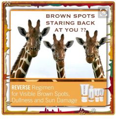 Reverse skincare by Rodan and Fields! To receive great results....Order here amandacole.myrandf.com