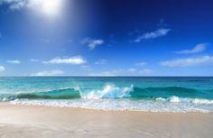 I dream of the beach!