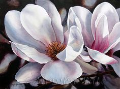 Magnolias by Monika Pate Watercolor ~ 20 x 28 Flor Magnolia, Magnolia Flower, Art Floral, Watercolour Painting, Watercolor Flowers, Watercolours, Flora Flowers, Beautiful Paintings, Painting Inspiration