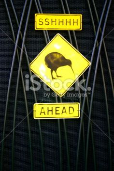 Sshhh Kiwis Ahead Sign, New Zealand Royalty Free Stock Photo Long White Cloud, Kiwiana, New Zealand Travel, Travel And Tourism, Image Now, Royalty Free Stock Photos, Birds, Culture, Yellow