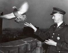 Col. Clifford A. Poutre tossing the last bird in 1957 at the close-out of the U.S. Army Signal Corps Pigeon Service, Fort Monmouth. /Photo courtesy of Alessandro Croseri Productions.