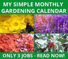 Domoney-gardening-jobs-calendar