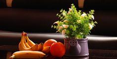 Примерное меню при естественном питании