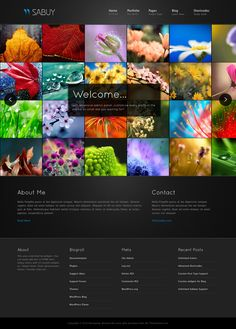 Sabuy is the #Premiumwp Portfolio #Template and photo gallery,built with latest #WordPress features. Custom Post Type, Unlimited Colors and Image Up loader etc.