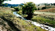 Brungle Creek NSW (1988)