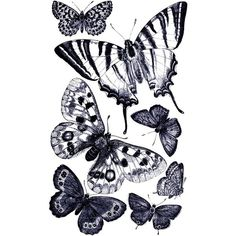 Free Vintage Digital Stamp Butterflies ❤ liked on Polyvore featuring home, home decor, vintage home decor, vintage home accessories and butterfly home decor