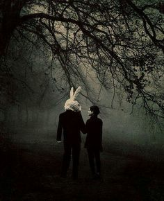 Photomontage, Images Terrifiantes, Rabbit Tale, Rabbit Head, Bunny Rabbit, Silly Rabbit, Dark Romance, Chesire Cat, Creepy Pictures