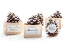 Rekindle the Flame.  Pine Cone Fire Starters.  Let love warm your hearts.  Bob and Jayne  35th Wedding Anniversary.