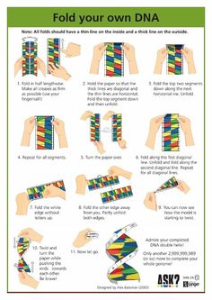 DNA Origami | Education and Classroom Ideas | Pinterest | Dna ...
