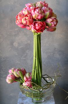 Intensely beautiful peony tulips bound with fine wire and held aloft solely by tension in the petite opening of the bowl   more at www.steveolivieri.com