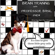 Basil's Blog: Time To Give Those Little Grey Cells a Workout on Brain Training with Professor Basil P.H.D. #48 Only One More Class To Go!