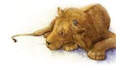 Image result for watercolour paintings - lions