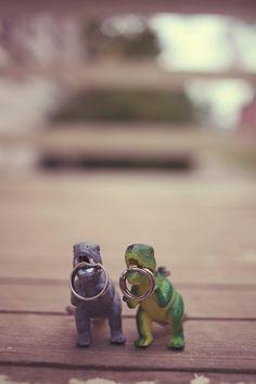 Curtis + Jocelyn - Brooke Courtney Photography / dinosaurs / wedding rings