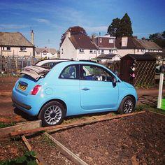#Fiat500C #Fiat #capote #day #sun