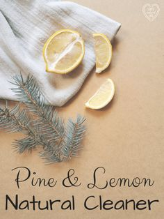 This Pine and Lemon Natural Cleaner works and smells amazing. I don't reserve it for December - I use it all year, because I want it to smell like Christmas all the time, and what's wrong with that? Cleaning Recipes, Cleaning Hacks, Braggs Apple Cider Vinegar, Fitness Models, Nut Milk Bag, Green Living Tips, Glass Spray Bottle, Natural Cleaning Products, Natural Products