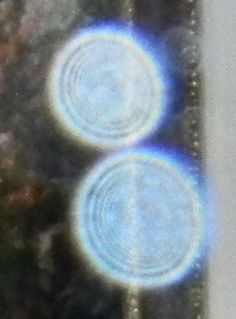 Feb.2012::Orbs have many different types of interior designs. Typically we see mandala patterns, bumps, knobs, tracks and concentric circles. Occasionally we see faces. We can see a very clear picture of the numerous concentric circles in each orb. The lower one has upwards of 9 rings. What do they mean? Are they similar to the rings on a tree that tell us their age? Could it possibly have a connection to the number of spiritual dimensions that exist?