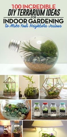 100 Incredible DIY Terrarium Ideas for Indoor Gardening to Make Your Neighbors Jealous ~ Be Creative