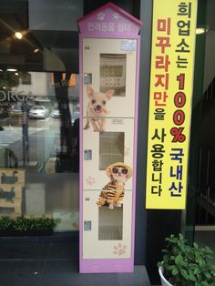 Secure boxes to store your pets outside a Korean fruit shop