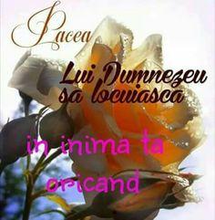 Jesus Loves You, God Jesus, Madonna, Love You, Bible, Te Amo, Je T'aime, I Love You