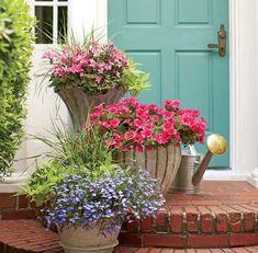 die 290 besten bilder von vorgarten gestalten succulents cacti garden und garden art. Black Bedroom Furniture Sets. Home Design Ideas