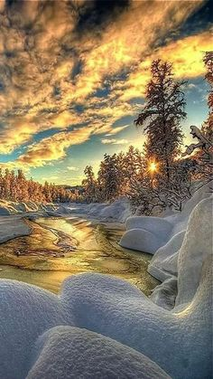The focal point is the illuminated clouds in the sky. My eye then travels to the reflection of the light on the frozen water. Then they go to the sun shining through the trees and continue right to left along the length of the trees.