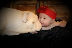 Such a sweet 4 month old pose 6 puppy love photo