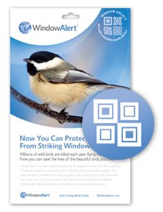 Snowflake Decal Envelope Decal Pack Good Things Pinterest - Invisible window decals for birds