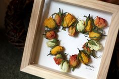 dried apple crafts | ... - Florist, Illustrator and Photographer in Durham: Christmas Crafts