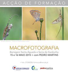 Macrofotografia na Beira Baixa!
