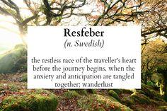 <*> RESFEBER <*>