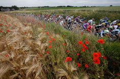 Tour de France 2012 through the countryside of the Belgian Province of Namur #poppies #belgium