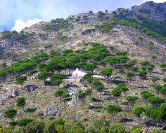 Ermita del Calvario . MIJAS