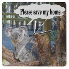 Koala Save My Home Wall Clock