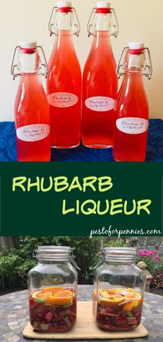 Rhubarb Liqueur, infused with orange and ginger, is a sweet but tangy liqueur. P… Rhubarb Liqueur, infused with orange and ginger, is a sweet but. Cocktails With Malibu Rum, Rum Cocktail Recipes, Easy Drink Recipes, Cocktail Drinks, Wine Recipes, Rhubarb Liqueur Recipes, Homemade Liqueur Recipes, Homemade Alcohol, Homemade Liquor